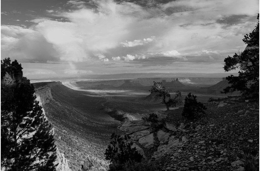 Intermediate 2nd – First light in the canyon_Gareth Quinn
