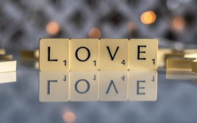General 2nd Place – Love is all you Need_Lesley Fidell