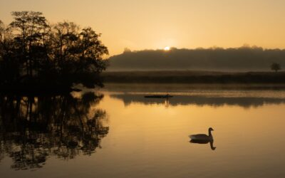 HIGHLY COMMENDED – Dawn at Penn Ponds_Susan Gaszczak