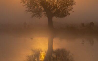 Intermediate 3rd_Misty Morning_Chris Smyth