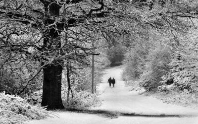 Set 3rd – Snow Stroll_Jaffer Bhimji LRPS