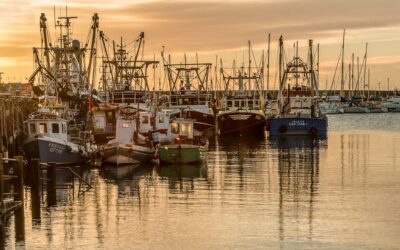 Set subject 2nd-Fishing fleet at dawn_steven meekins