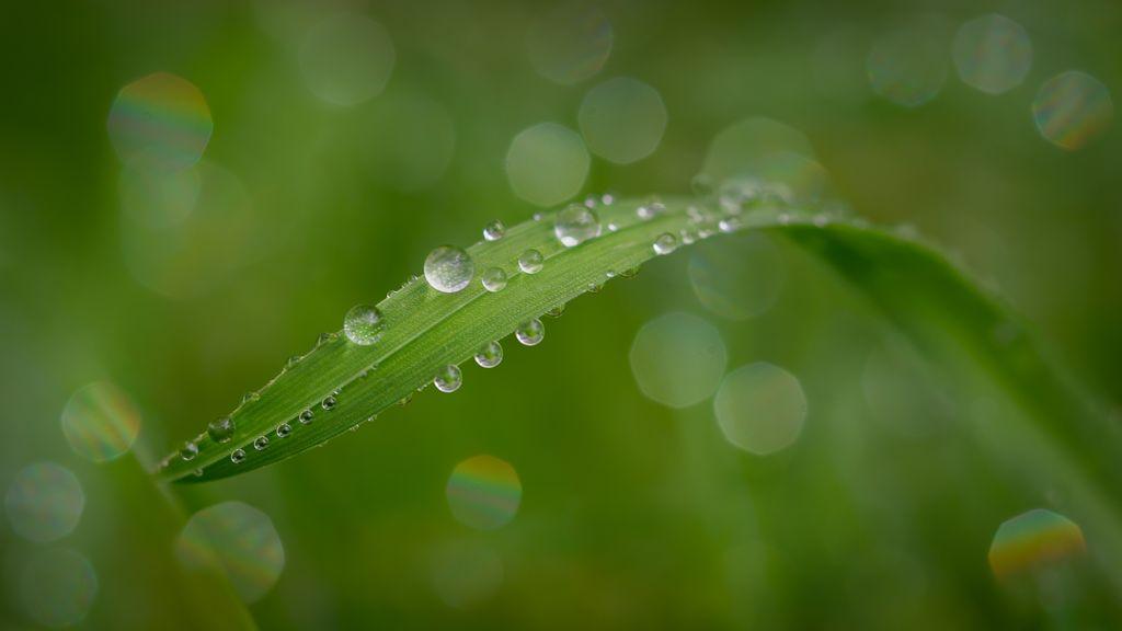 1st - Droplets_Patrick Seehanach