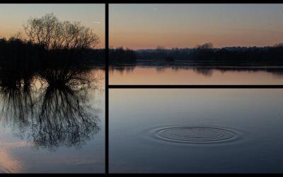 Single Image Panel 1st – Ripples_Simon Peters