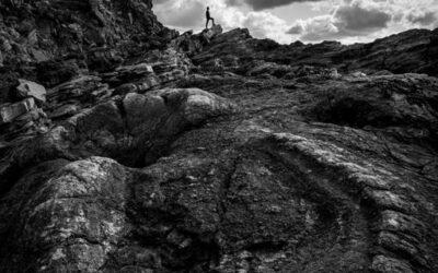 Intermediate 3rd – Exploring Fossil Forest_Henry Frakes