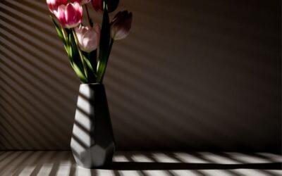 Set Subject 1st – Shadows Through the Window_Sam Blood