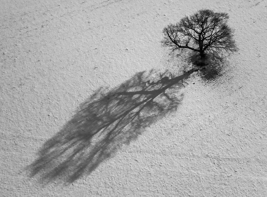 Set Subject 2nd – Snow Shadow_Simon Peters